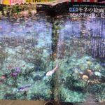 モネの池の雑誌