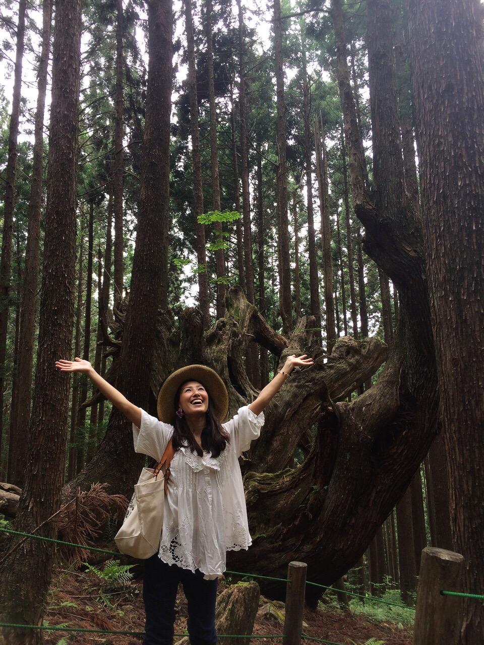 株杉の森の巨大株杉で撮影