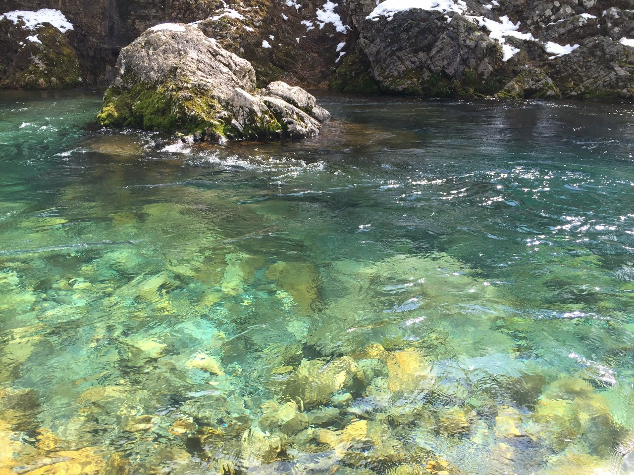 水が綺麗な板取川