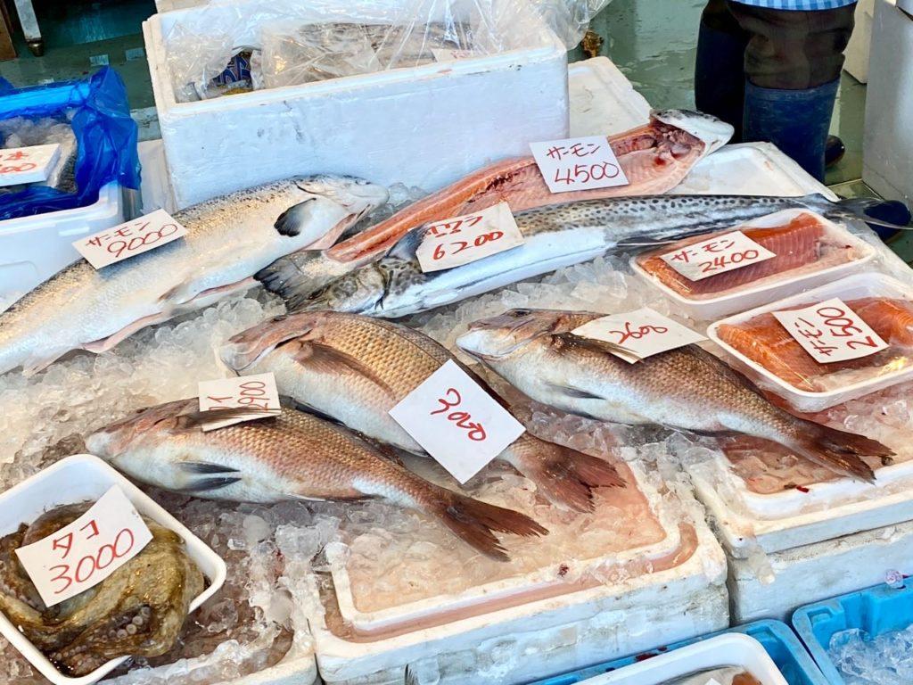 新鮮なお魚がたくさん